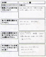 voice_03_wm-sama